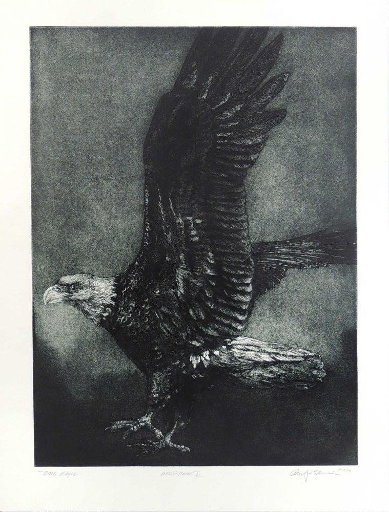 Bald Eagle [Original Print]. Cheloniidae Press, Alan James Robinson, artist.