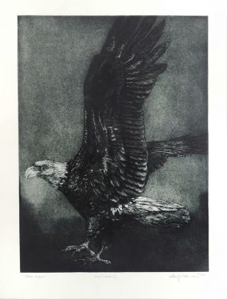 Bald Eagle [Original Print]. Cheloniidae Press, Alan James Robinson, artist