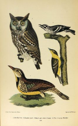 American Ornithology; or the Natural History of The Birds of the United States. Volume one ONLY...